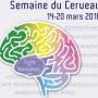semaine-du-cerveau